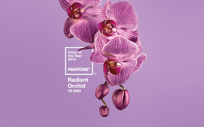 Color Of The Year 2014 | Radiant Orchid